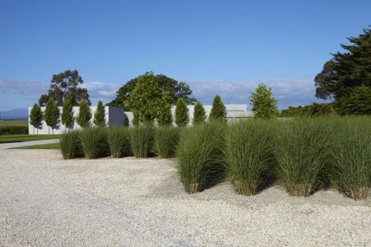 diseño paisajismo arena grava plantas