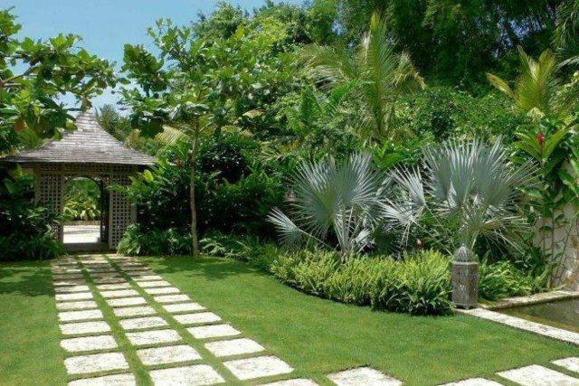 entrada jardin camino plantas palmeras