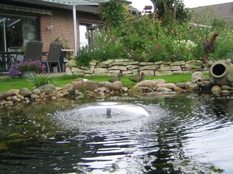 estanque grande muro piedra plantas ideas