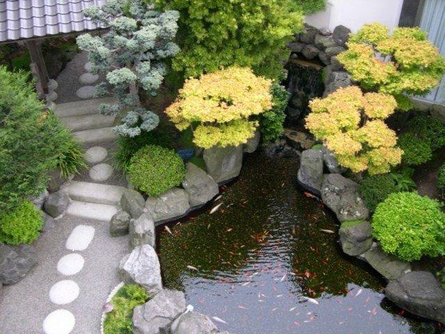 estanque koi puente jardin oriental