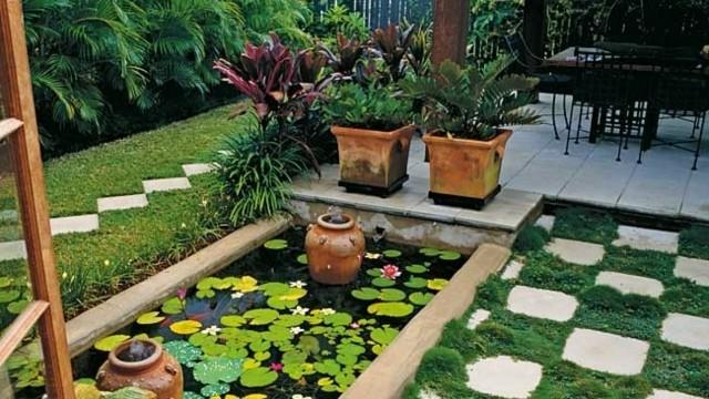 estanque pequeño rectangular lotus jardin