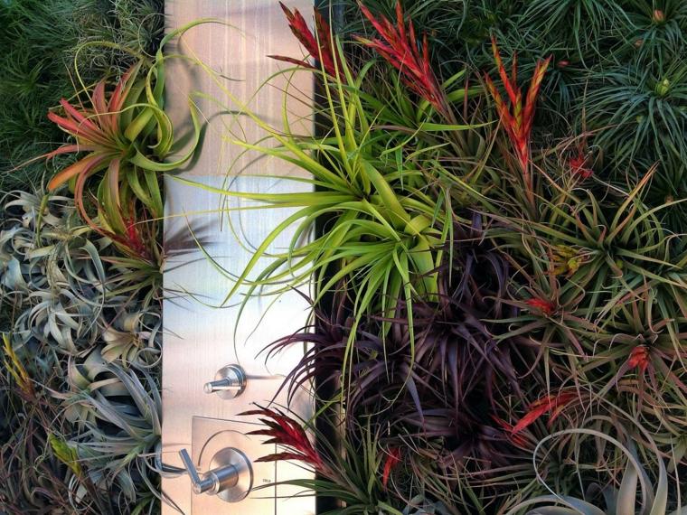 estupenda ducha jardin vertical plantas