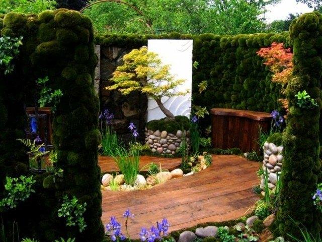 estupendo jardin musgo paredes plantas