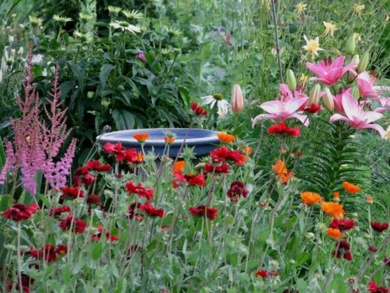 excesivo colorido patio flores colorido
