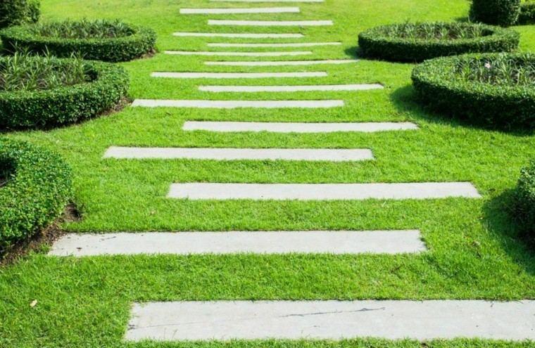 hierba verde camino jardin