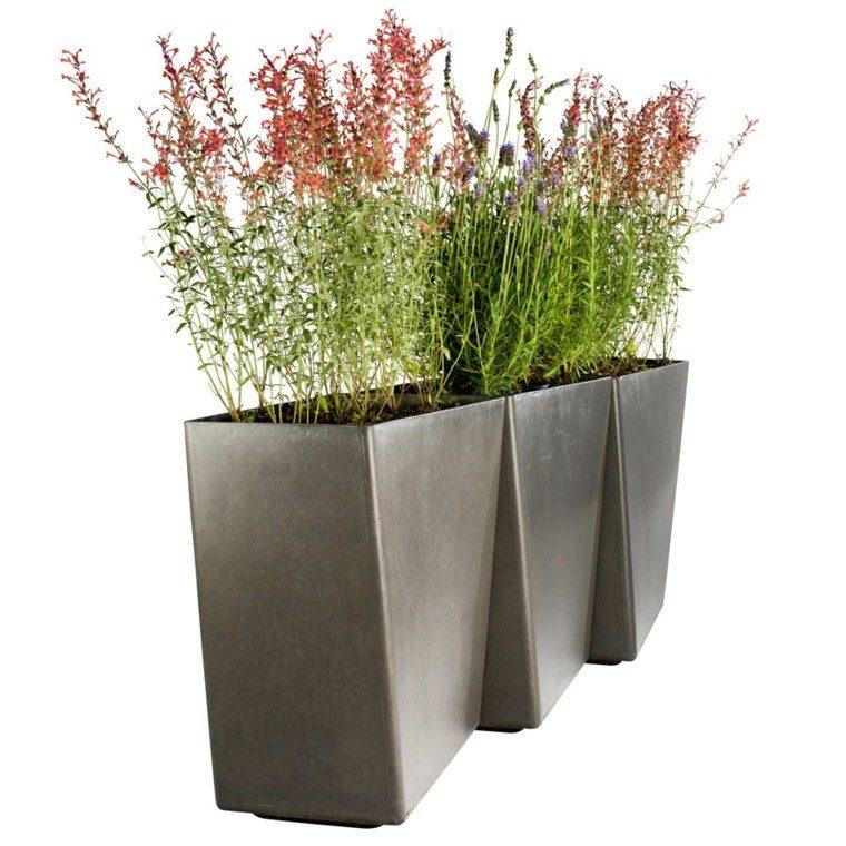 hormigon pulido textura geometrico plantas