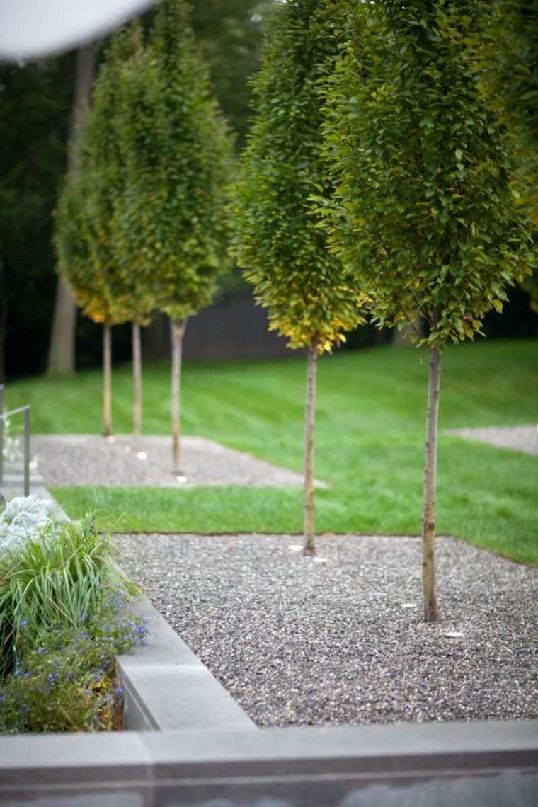 Paisajes bonitos y caminos de guijarros en el jard n for Arboles decorativos para jardin