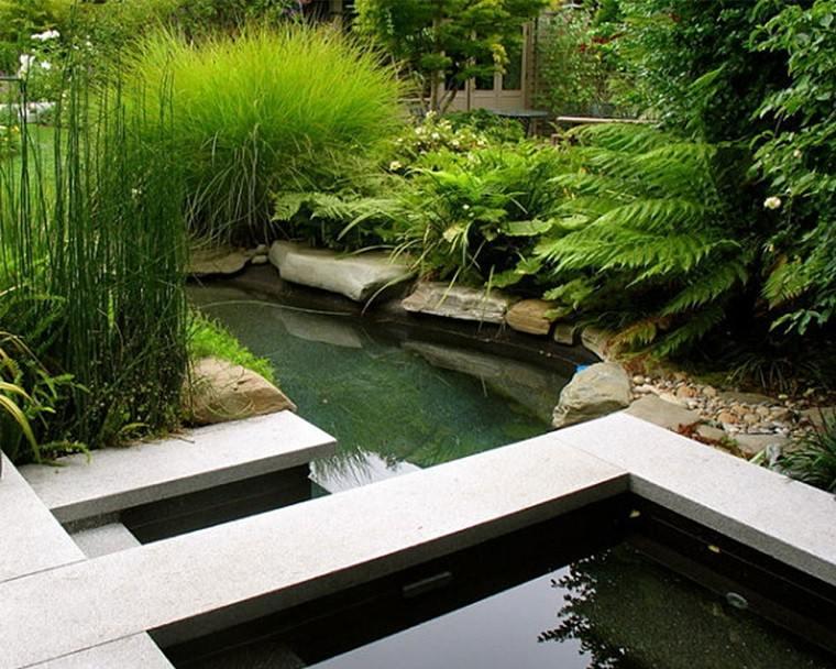jardin rocas estanques peces plantas grava
