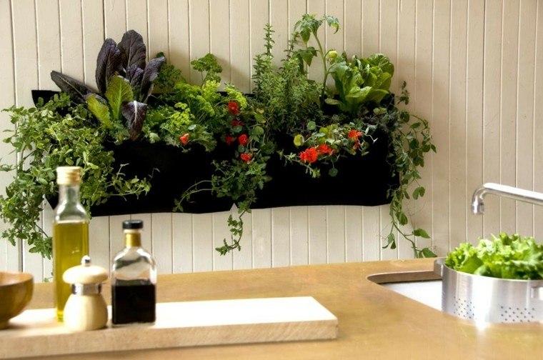 Especias naturales cultivadas en macetas de interior