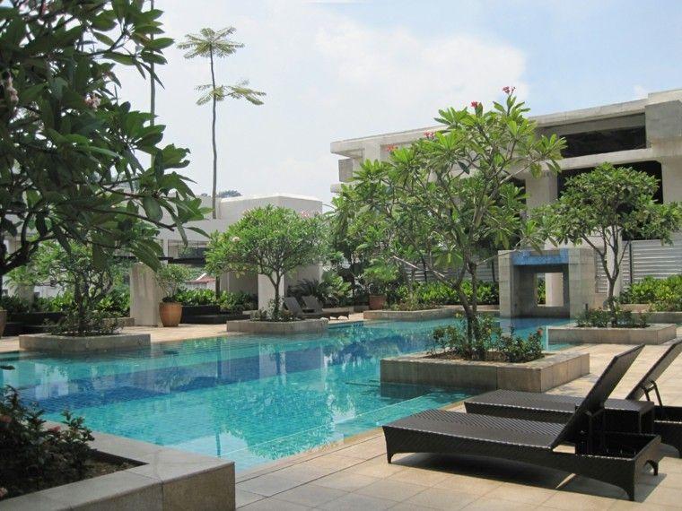 jardines y terrazas amplios estilo tropical piscina ideas