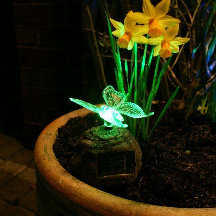 luz mariposa maceta jardin flores