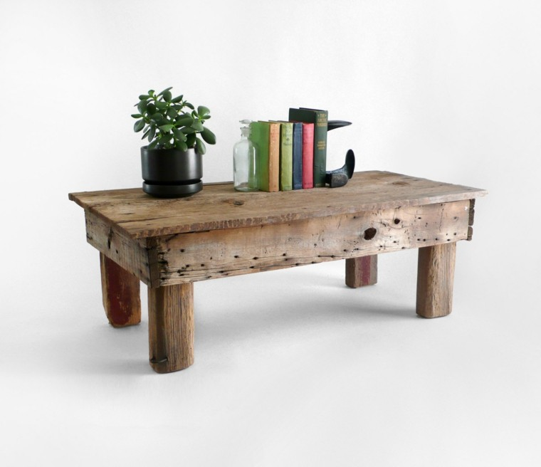 muebles rusticos mesa centro plantas libros