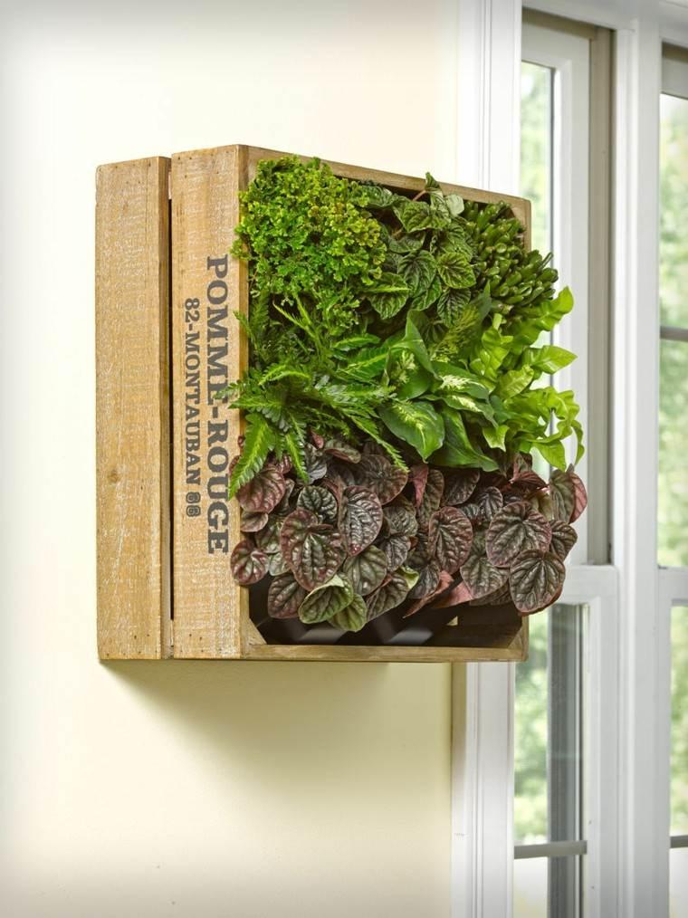 palet viejo madera plantas vertical