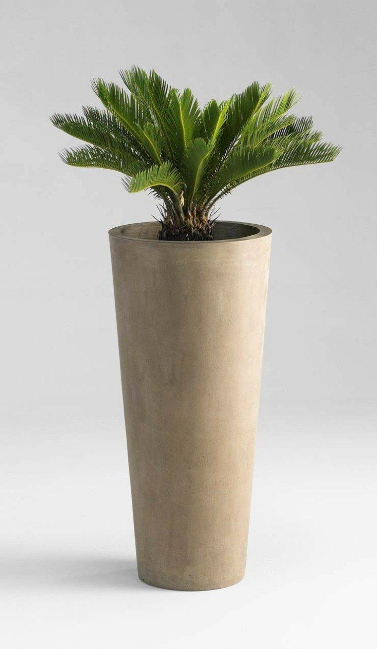 palmera cilindrico exterior planta hormigon