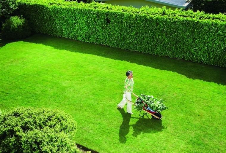 parcela jardin color muy verde