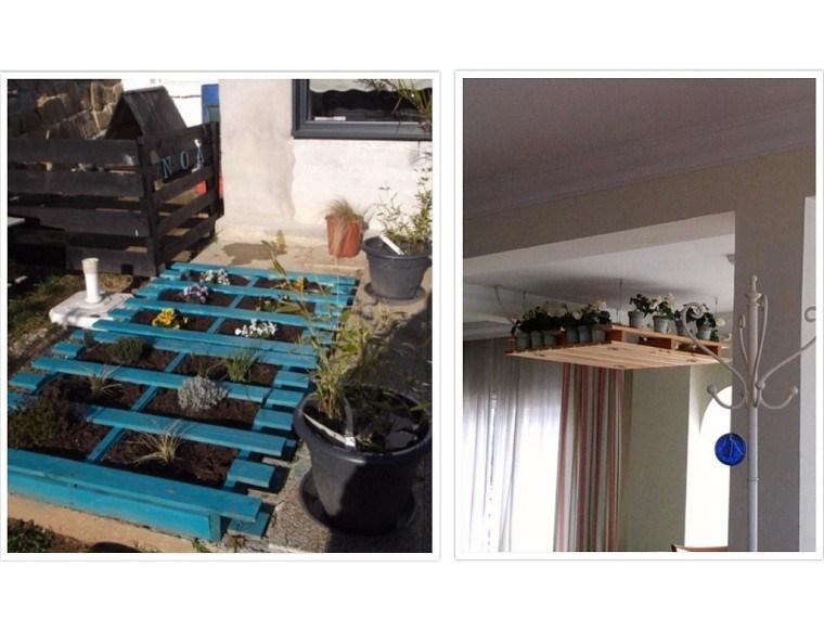 patio plantas salon macetas sembrado