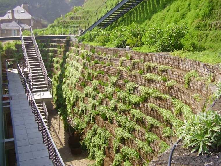 pendiente jardin montaña plantas cascadas