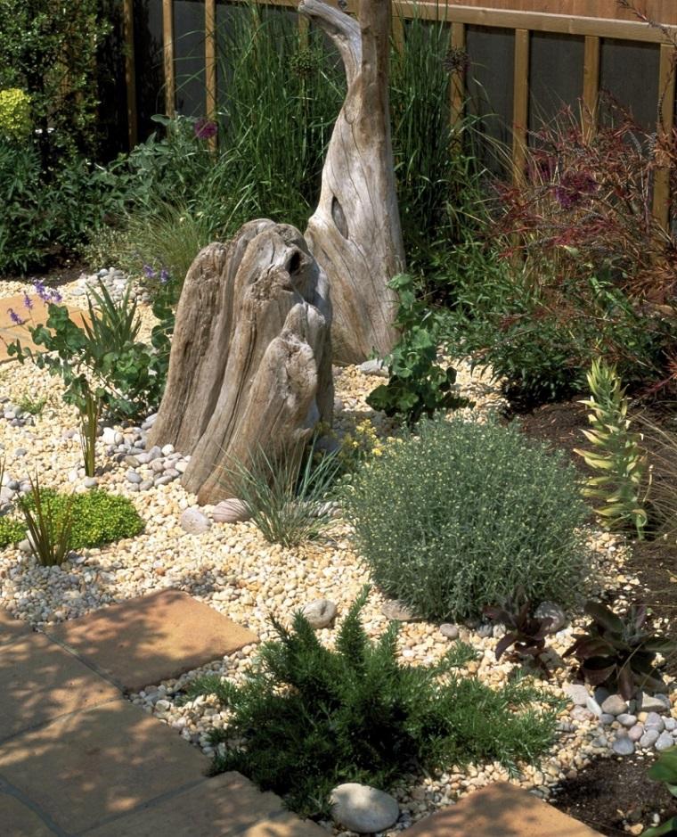 piedrecitas decorativas plantas jardin deco