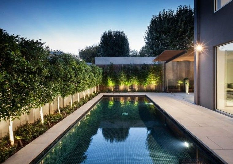 piscina larga led plantas moderno patio