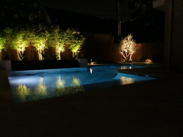 piscina plantas focal luz arbustos jardin