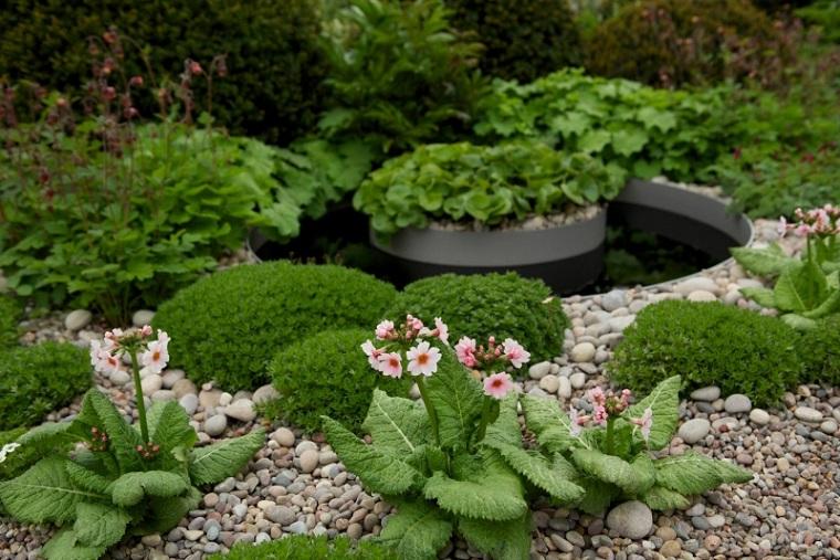 plantas flores piedras cantos redondas