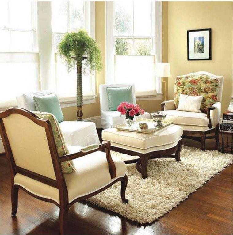 plantas muebles alfombra cuadro madera