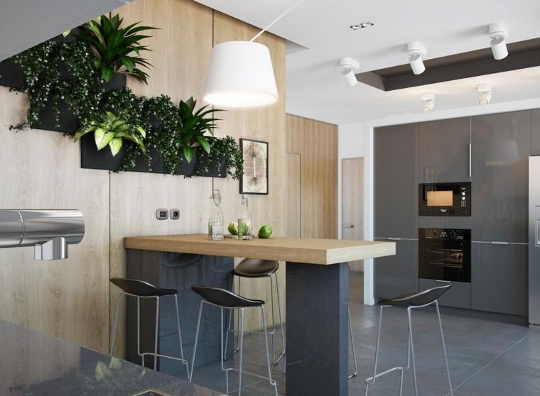 plantas pared cocina moderna moderna