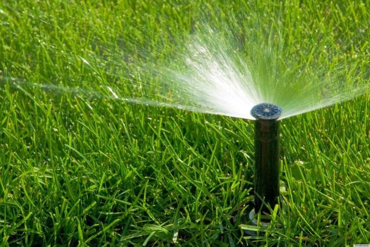 regar jardin hierba aspersor césped