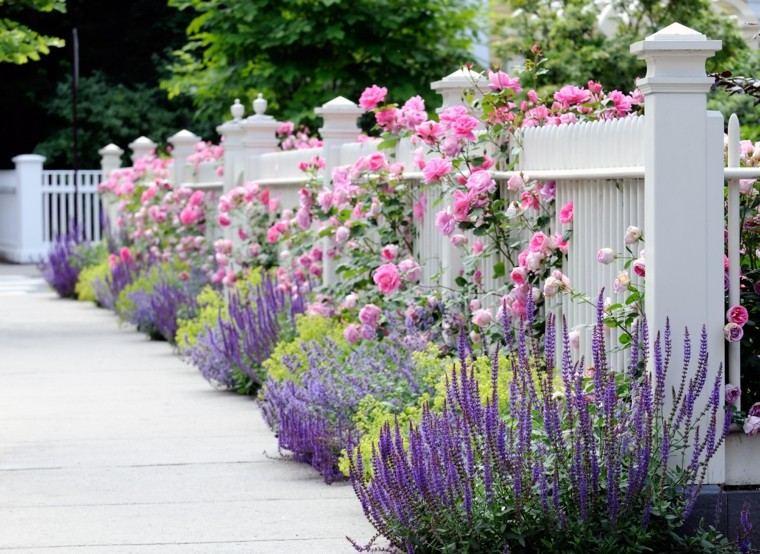 valla blanca madera baja rosas lavanda preciosa ideas