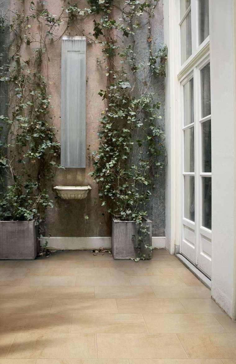 jardin color beige fuente ideas plantas trepadoras