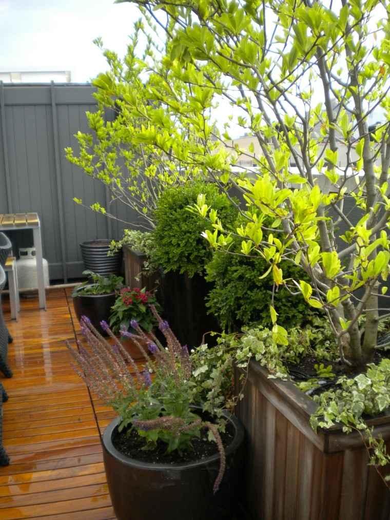 bello espacio decorado flores madera