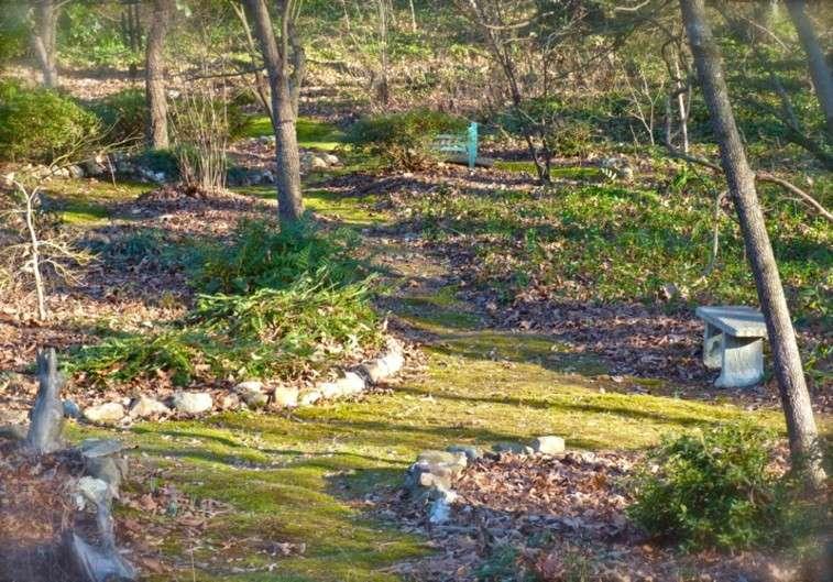 bordes piedra sendero natural jardin