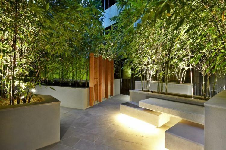 fotos jardins modernos:Cañas de bambú para decorar patios y terrazas