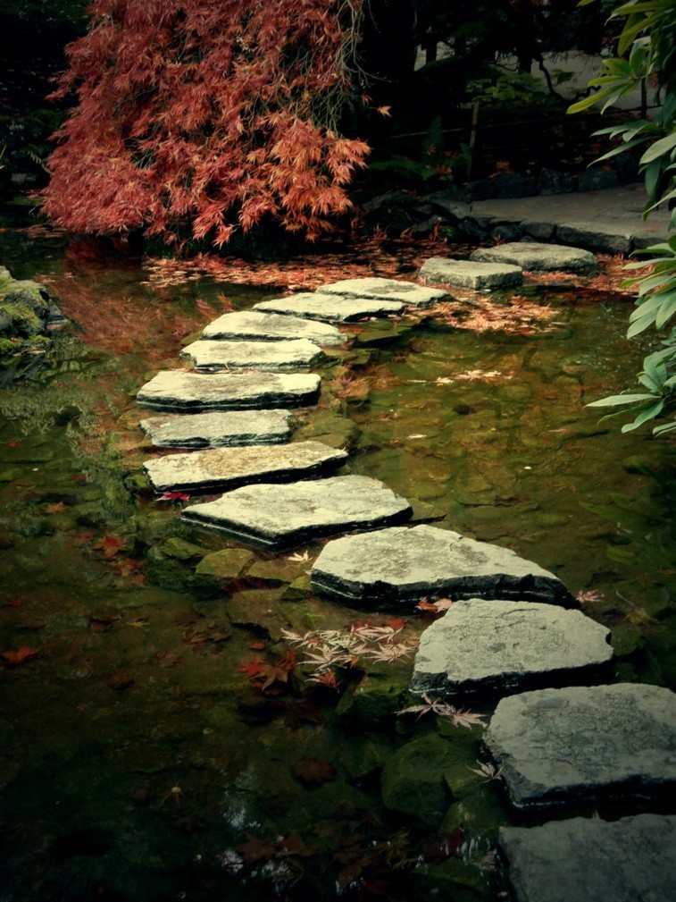 camino agua estanque rocas lisas