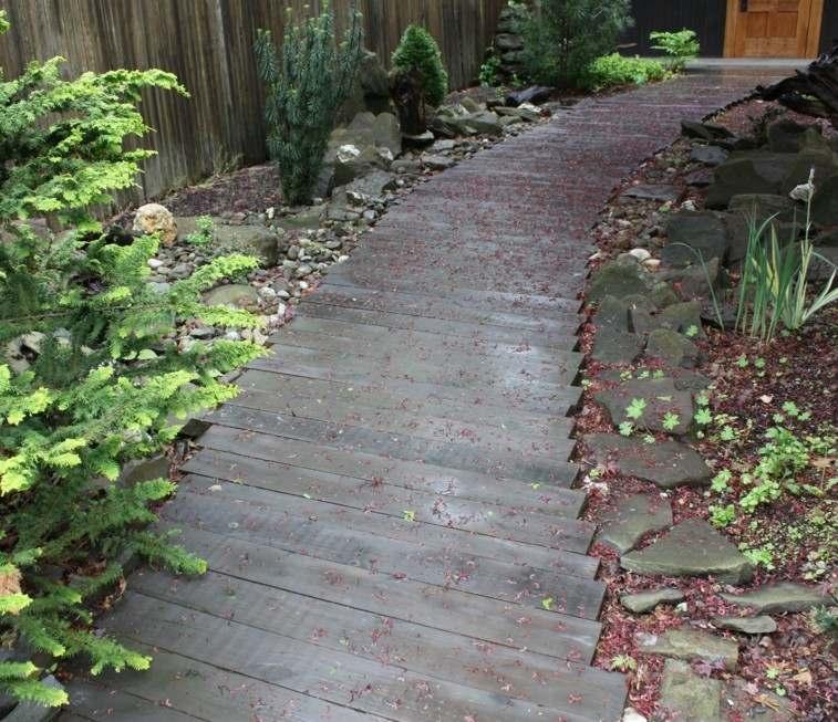 camino madera rodeado bordes piedras