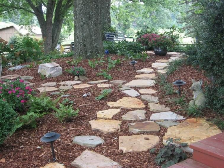 camino piedras cortezas pino lisas