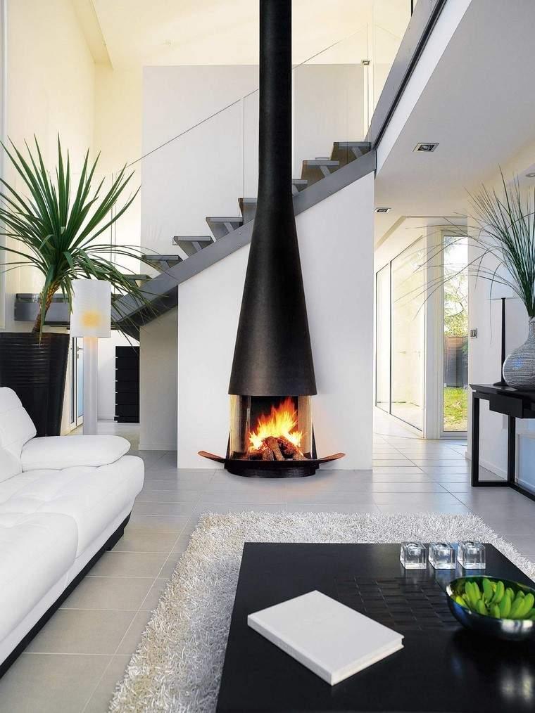chimenea negra fuego techo alto salon ideas