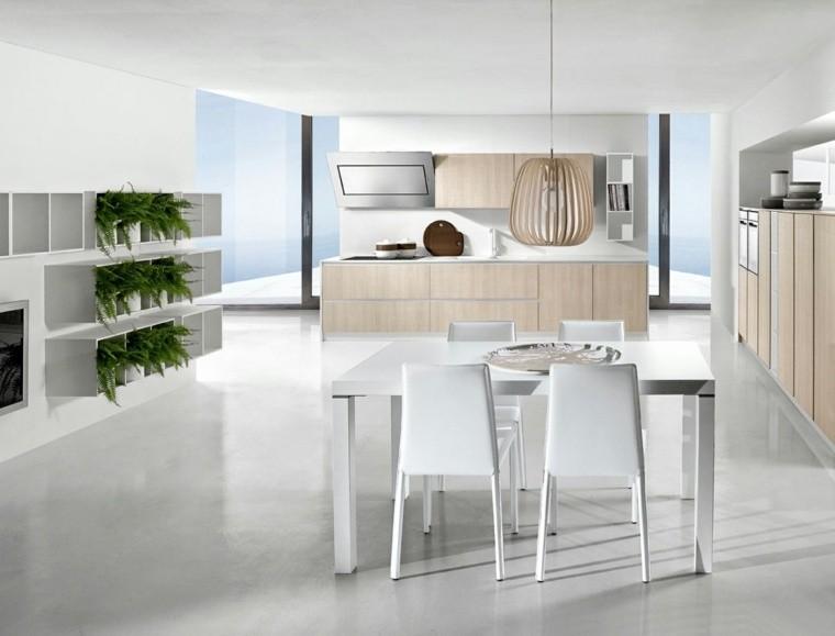 decoración interiores cocinas plantas verdes amplia ideas