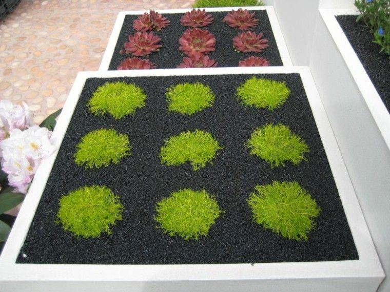 diseño paisaje macetas plantas colores