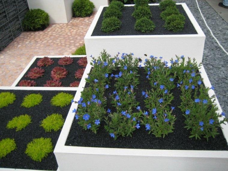 diseño macetas plantas ordenadas