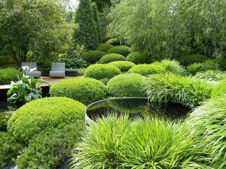 diseño paisaje muchas plantas setos