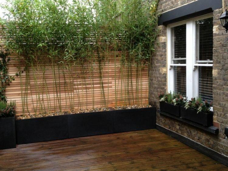 diseño terraza madera plantas bambu