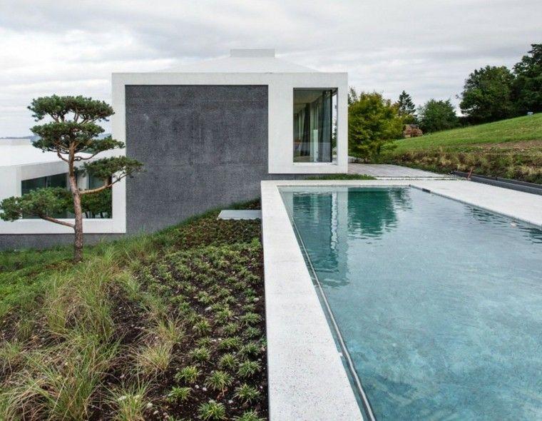 climbing modern house herbs summer terrace
