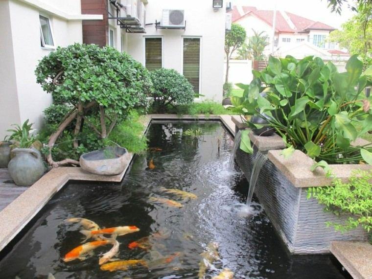 estanque hormigon plantas peces colores cascada