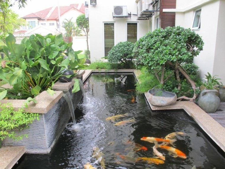 estanque jardin koi peces cascadas