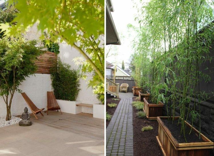 ca as de bamb para decorar patios y terrazas