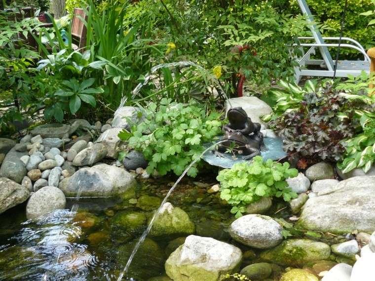 fuente estanque natural rana plantas