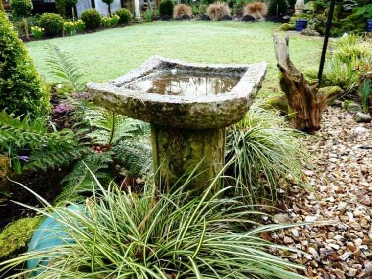 fuente piedra aspecto viejo plantas