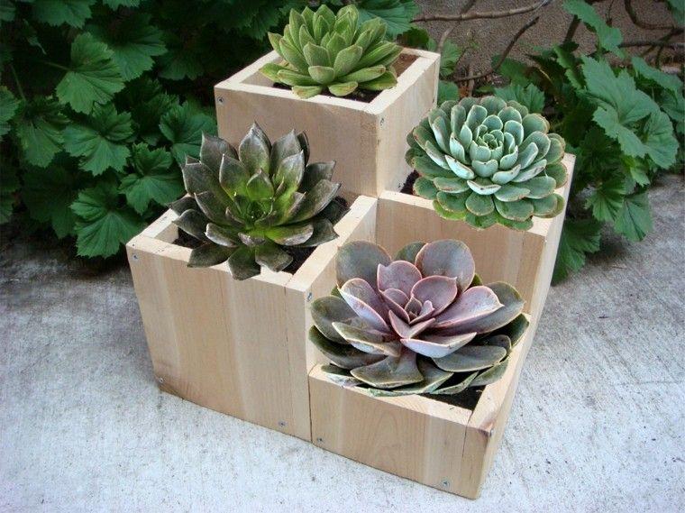 maceta madera jardin plantas faciles cuidar