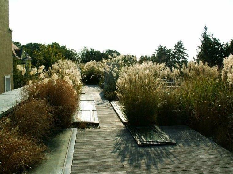 hierbas atardecer terraza sol madera